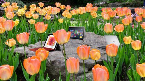 laptopy poleasingowe na wiosne-min